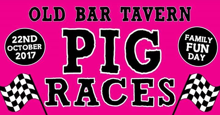 Pig Races