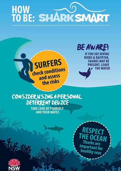 Surfers: Be SharkSmart th…