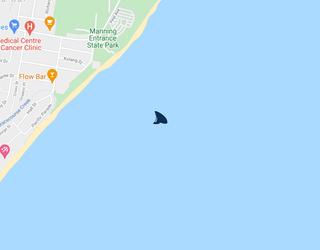 Official Shark Report:…